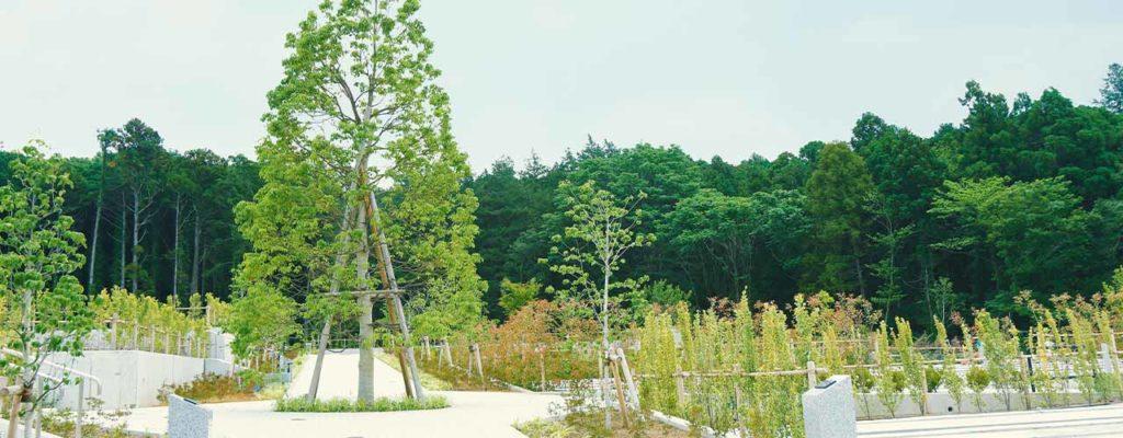 川井聖苑の木々